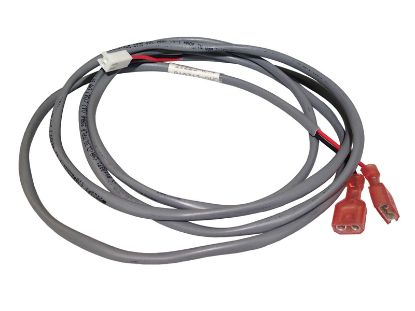 "FLOW SWITCH CABLE: 2-POSITION  56"" WITH PLUG 21223"