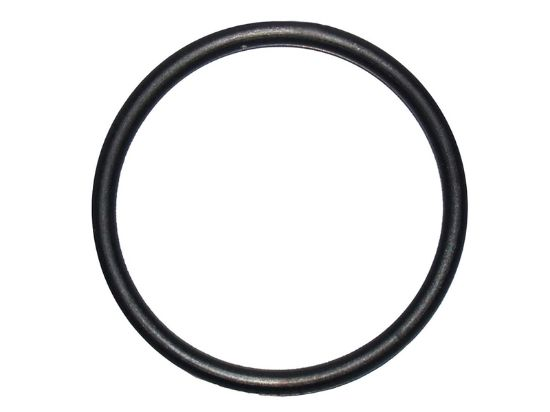 "HEATER O-RING: TAILPIECE 1-1/2"" 805-0224"