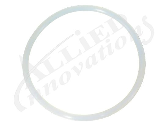 "JET PART: 4"" JET BODY O-RING RD701-0408"