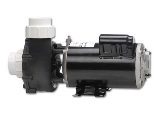 PUMP: 1.5HP 115V 60HZ 2-SPEED 48 FRAME FLO-MASTER XP2 06115000-1040
