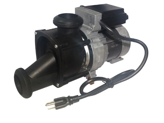 PUMP: 115V WITH AIR SWITCH AND NEMA CORD, BULK 21000
