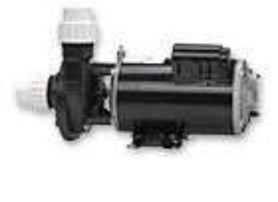 PUMP: 2.0HP 230V 60HZ 2-SPEED 48 FRAME FMHP 02120000-1010