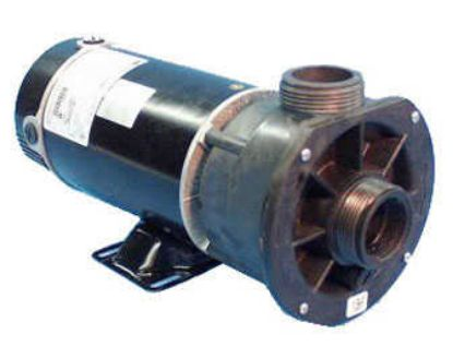 PUMP: .75HP 115V 60HZ 2-SPEED 48 FRAME 3420310-15