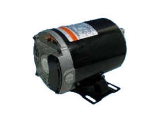 PUMP MOTOR: 1.0HP 115V 2-SPEED 48 FRAME THRUBOLT AGL10FL2S