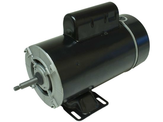 PUMP MOTOR: 3.0HP 230V 60HZ 2-SPEED 48 FRAME THRUBOLT BN62