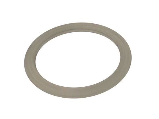 SKIMMER PART: THIN LINE WALL GASKET 46135200